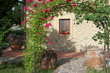 San Gimignano CT - Small organic farm with 6 bedrooms and swimming pool