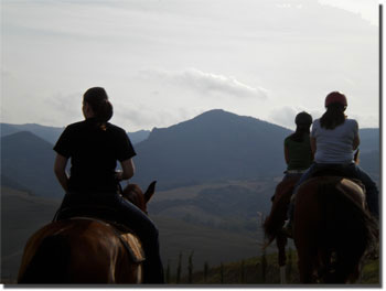 Horseback riding on the  in hills around Volterra