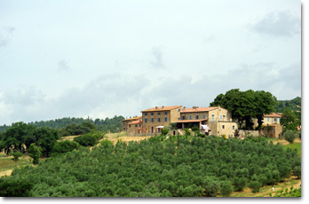 Relax and good cooking between Volterra and San Gimignano
